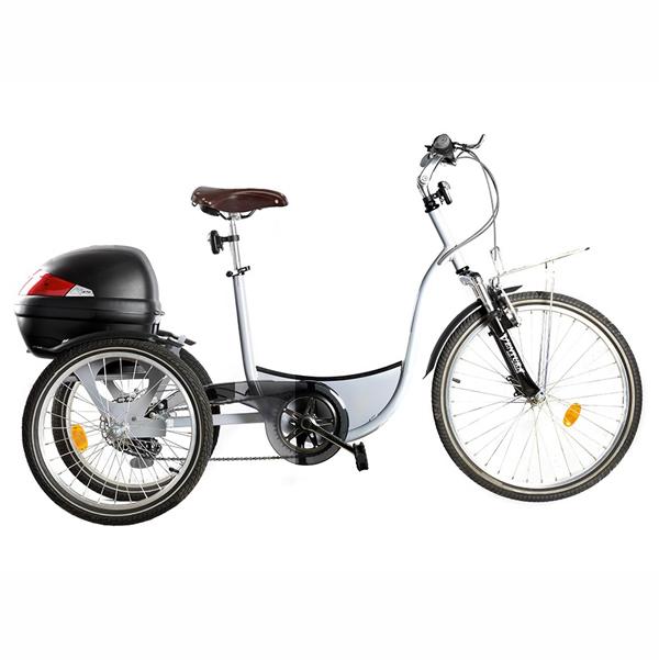 Lucyle + - Tricycle à deux roues arrière propulse par le...