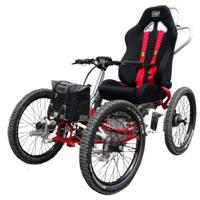 E-buggy - Fauteuil roulant électrique sport & loisirs...