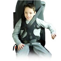 Harnais de maintien - Harnais de sécurité pour véhicule...
