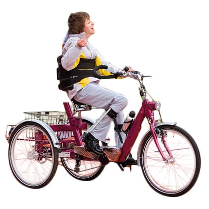Ecoline - Tricycle à deux roues arrière propulse par les...