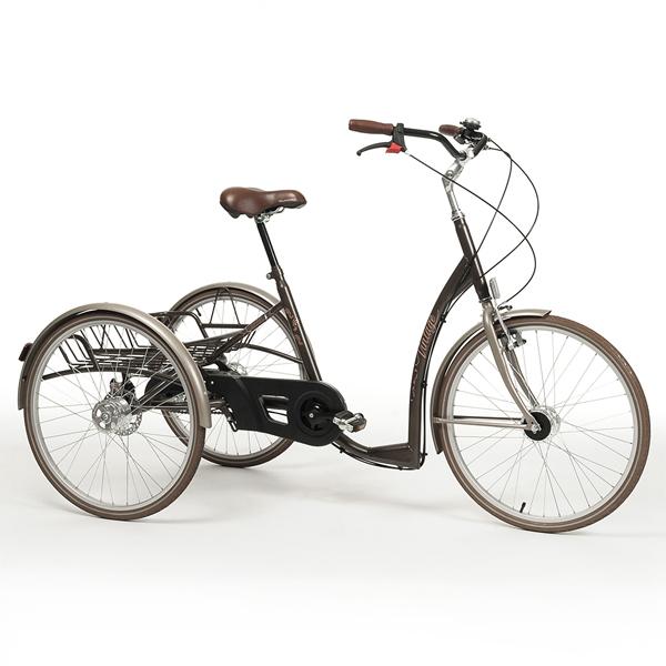 2219 Vintage - Tricycle à deux roues arrière propulse pa...