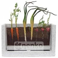 Culture de racines 15572 - Outil de jardinage...